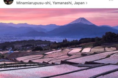 Best Instagram Accounts to Discover Japan