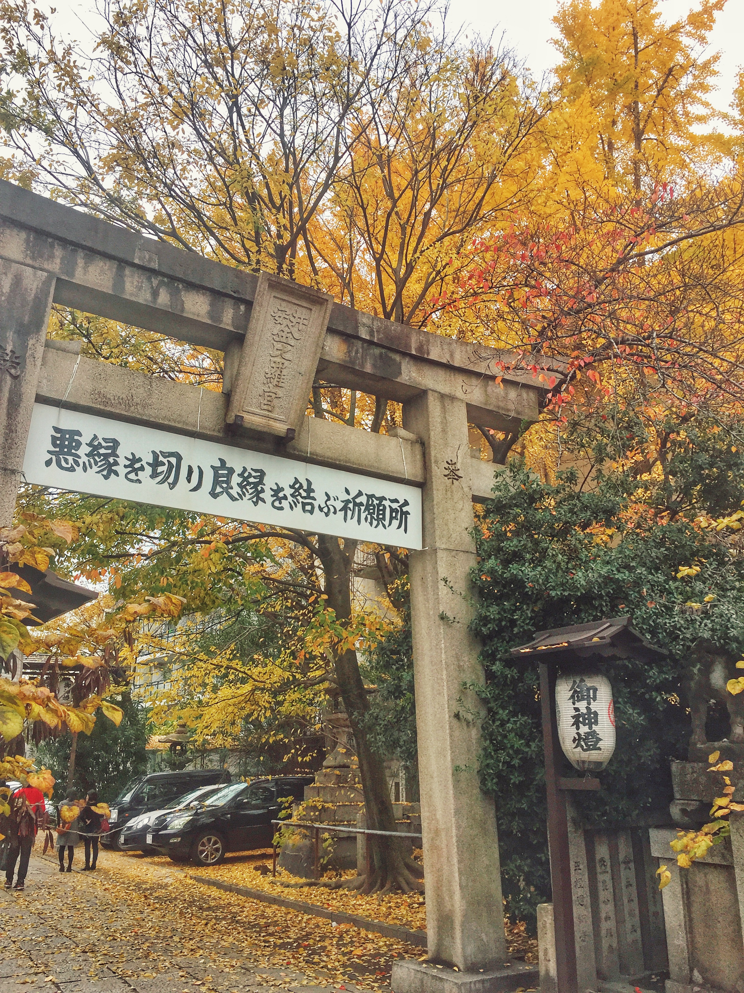 kyoto-autumn