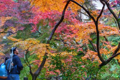 In Photos: Osaka Autumn 2016