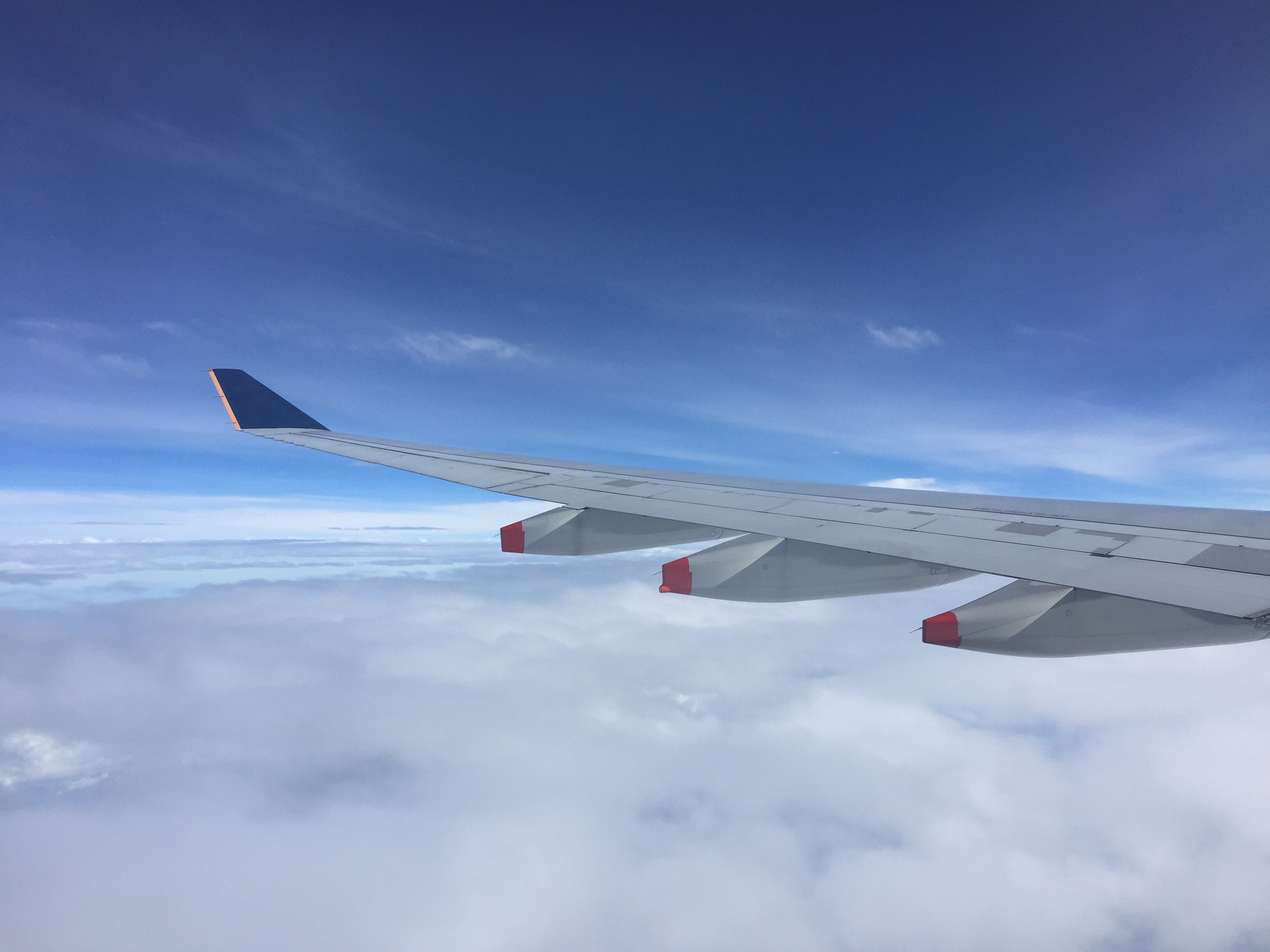 singapore airlines airplane wing